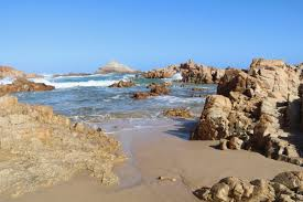 garden route in south africa with kids