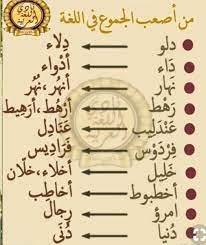 اسماء جمع في اللغة العربية