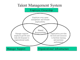 Talent Management System Organization Role Career And Talent Management Ppt Download