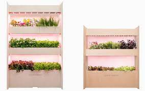 tiny garden in your house with wall farm