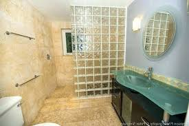 fancy glass shower wall panels intended for renovation frosted
