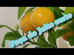 Aparecida, árvores que produzem frutas cítricas, como laranja, limão ou mexerica, não precisam de podas, segundo observa o engenheiro agrônomo josé dagoberto de negri, do centro de citricultura sylvio moreira, do instituto agronômico de&nbs. Faca A Poda Do Seu Pe De Laranja No Mes Certo E De Maneira Correta Que Ele Vai Florir Youtube