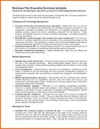 Executive Summary Business Plan Example Sample Pdf Template 41313