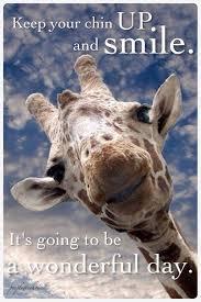 Regina Bright On Twitter Smile Positive Life Quotes Giraffe Classy Giraffe Quotes