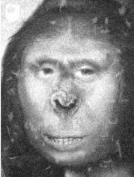 The russian ape woman lena