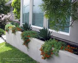 Modern Landscape and Planters with Architectural Plants - Greenbrae, CA  contemporary-landscape