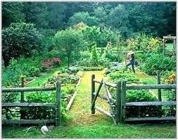 Free Vegetable Garden Plans Zoofood Info