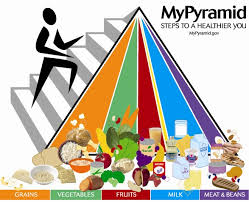Food Group Pyramid Chart A Brief History Of Usda Food Guides Choosemyplate