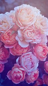 Pink Flower Wallpaper Iphone X - Iphone ...