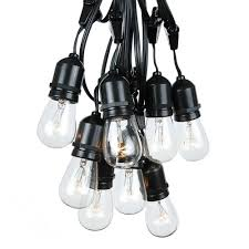 25 clear s14 commercial grade suspended light string set on 37 5 of black wire