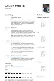 Promotional Model Resume samples