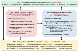 Gender-Net Era-Net - Overall Workplan