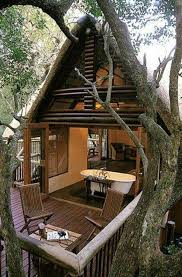 luxurious tree house. What An Amazing Way To Live: Close Nature, Up Above The Ground, Luxurious Tree House