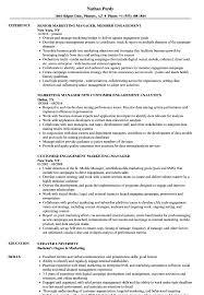 Engagement Marketing Manager Resume Samples Velvet Jobs