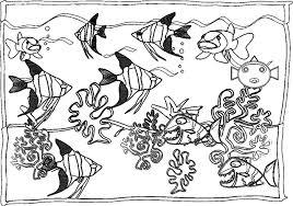 Coloriage Aquarium A Imprimer L Duilawyerlosangeles