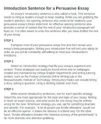 Good Introductions To Essays Examples Examples Of Good Hooks For