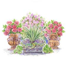Stunning LowBudget Container Gardens  HGTVContainer Garden Plans Flowers