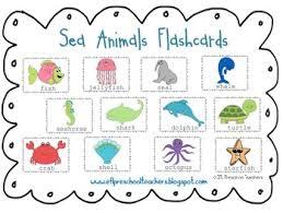 Sea Animals For English Language Learners