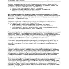 profile examples for resumes template good looking sample resume profiles outline profile examples for resumes good resume profile examples
