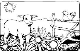 Boerderij Kleurplaten Lammetje