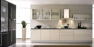 Small Picture Contemporary Kitchen Cabinets Doors Contemporary Kitchen Cabinets