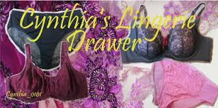 Addition Elle Bra Size Chart Cynthias Lingerie Drawer Ashley Graham Midnight Bodysuit