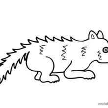 Small Picture PREHISPANIC ANIMAL coloring pages 18 free ANIMALS coloring pages