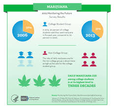monitoring the future survey results college and adults  marijuana infographic see text
