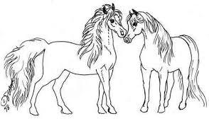 Fun Paard Webjouwwebnl