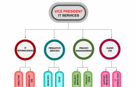 11 Particular Creative Organizational Chart Ideas Walt