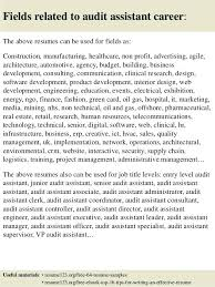 Sample Resume For Auditor Fields Related To Audit Sample Auditor
