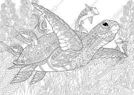 Small Picture Adult Coloring Pages Sea Turtle Zentangle Doodle Coloring