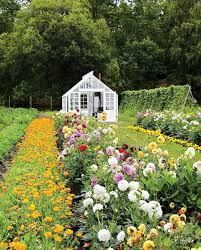 Small Picture 58 best Gardening Blogs images on Pinterest Flower gardening