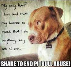 Pitbull Dog Quotes