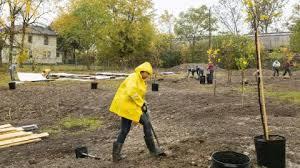 Tameka Sims designs Lima's South Jackson Community Garden | COLLEGE OF  ENGINEERING
