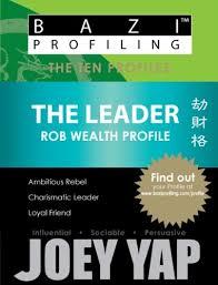 Bazi Profiling Series The Leader Rob Wealth Profile