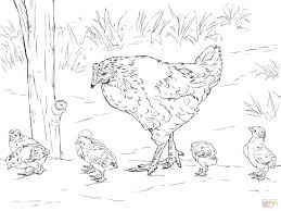 Little Red Hen Coloring Sheets Pretty Little Liars Printable