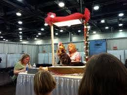 The Columbus Cat Show