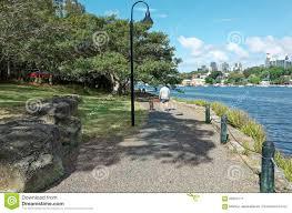 Ballast Point Park Dog Walker At Ballast Point Park Mort Bay Sydney Editorial