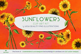 Complete with 10 christmas inspired svg designs, this bundle comes in svg, dxf, ai, eps and png. Sunflower Drawing Png Sunflowers Clipart Transparent Image 674563 Sublimation Design Bundles