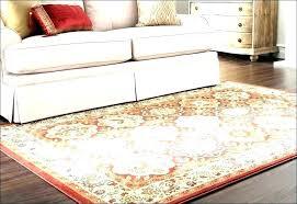 indoor outdoor rug runner kids bathroom rugs bathroom rugs rugs indoor outdoor rugs living room marvelous