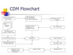 Clinical Data Management Flow Chart 44 Rigorous Clinical Data Management Work Flow Chart