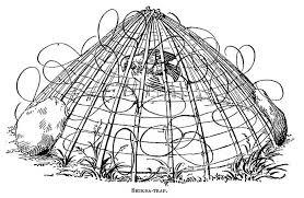 Bird Cage Trap Design Bal Chatri Wikipedia