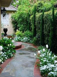 outdoor landscaping ideas. Evergreen Landscape Design Ideas For A Traditional Side Yard Landscaping In Outdoor Lighting
