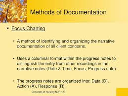 Documentation And Reporting Ppt Download