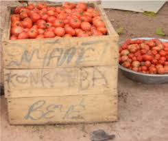a wooden crate used for packaging tomatoes in ghana source kitinoja alhassan 2010