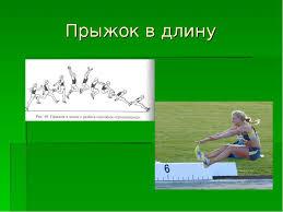 Лёгкая Атлетика Прыжки В Длину Реферат wellhill Легкая Атлетика Прыжки В Высоту Реферат