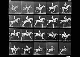 Check out the full blog post by clicking below. Eadweard Muybridge Collections Muybridge Image Context