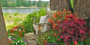 collection in design for potted plants for shade ideas container gardens made for the shade garden