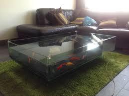 Fish Tank Coffee Table Uk Coffee Table Fish Tanks Uk Coffee Addicts